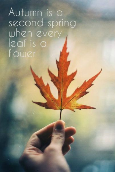 Hello, October!   Motivational Quotes In The Heart Of Autumn