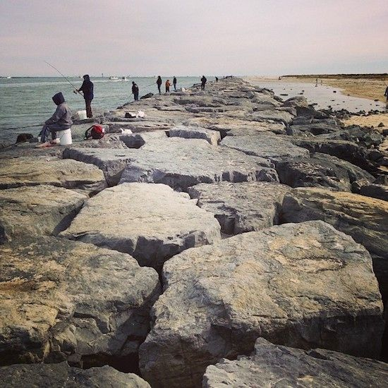 Long Beach Island New Jersey: The Best Place On The Jersey Shore, Bar None (With Images