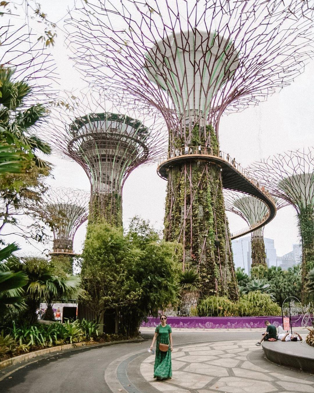 gardensbythebay singapore visitsingapore Visit