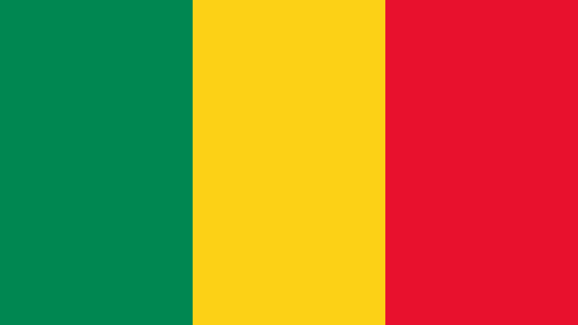Benin Flag Color Palette In 2020 Mali Flag Flags Of The World Flag Colors
