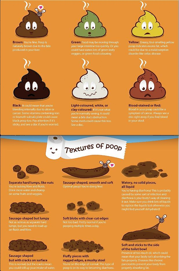 On A Grosser Note A Poop Chart Helps You Identify What