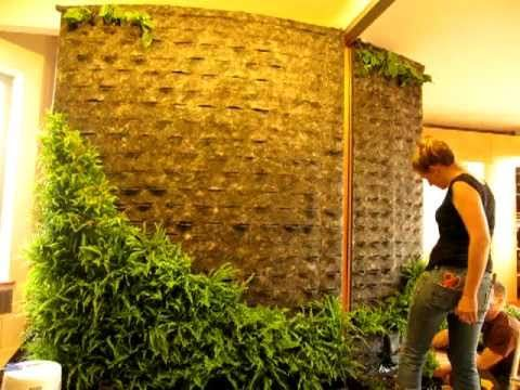 Diy How To Making Of Patrick Blanc Style Green Wall 400 x 300