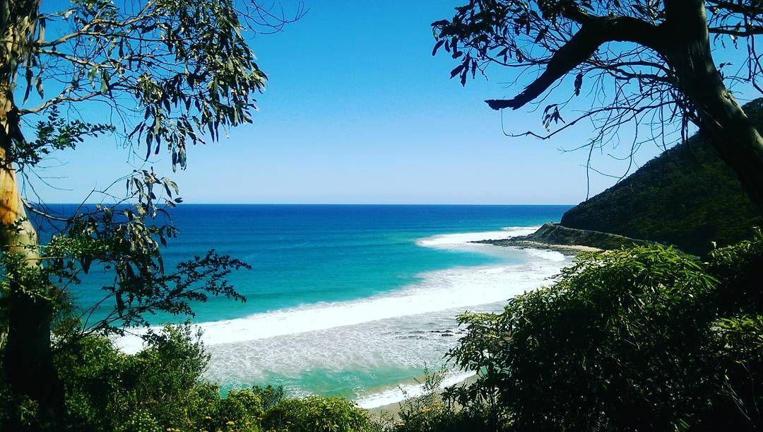 #australianbeaches#ocean#oceanside#greatoceanroad#adventure#travelaustralia#getoutdoors#keepitwild#gooutside#naturelover#landscapehunter#pacificocean#seascape#explore#exploreoutdoors#australia#staywild#oceanlover#wildernessculture by jessicapanda