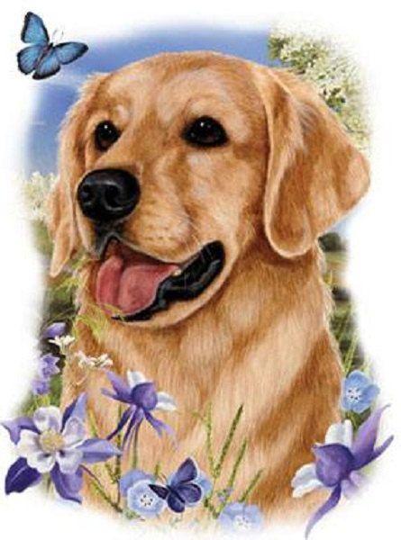 Golden Retriever Floral Dog T Shirt Item No 818c Dog Flower Dogs Golden Retriever Golden Retriever Quilt