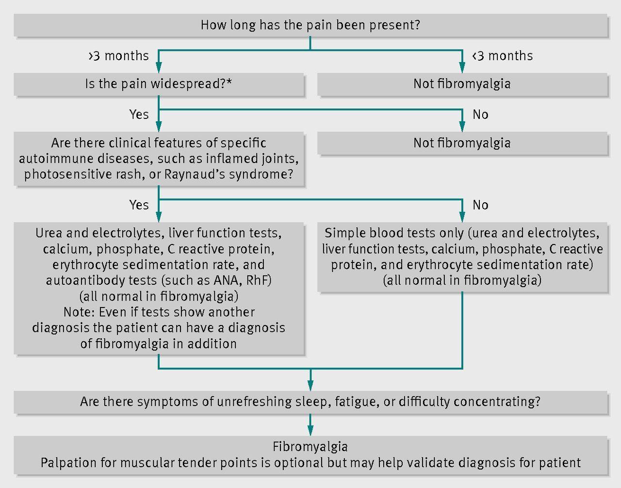Flow chart for diagnosis of fibromyalgia anaantinuclear flow chart for diagnosis of fibromyalgia anaantinuclear antibodies rhfrheumatoid factor nvjuhfo Gallery