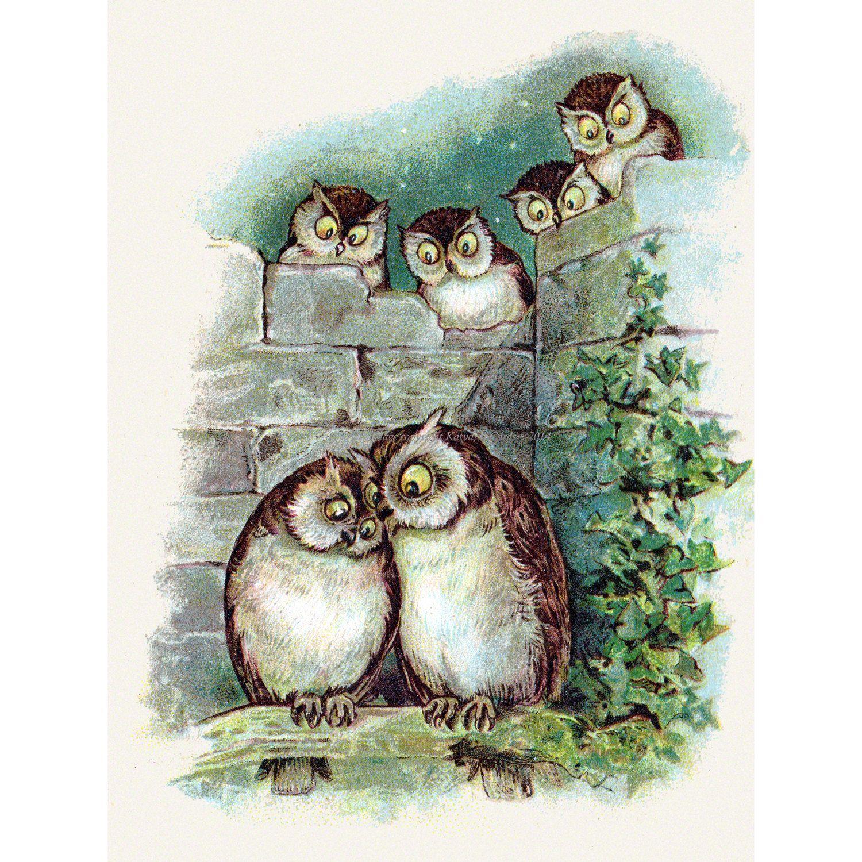 Открытка с совами и птичками, марта открытки