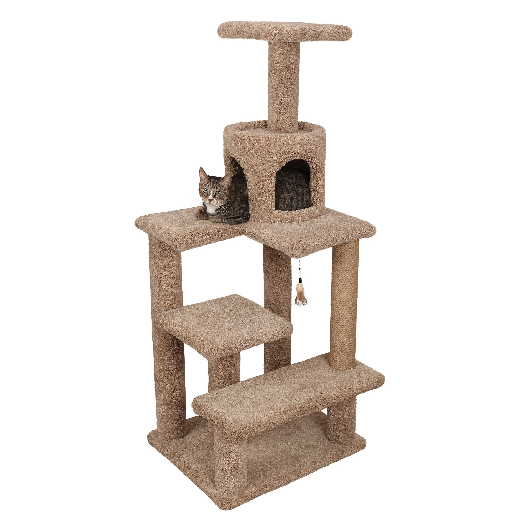 Whisker City Deluxe Kitty Gym Color Varies Cat Furniture Towers Petsmart Modern Cat Tree Cool Cat Trees Pet Spray