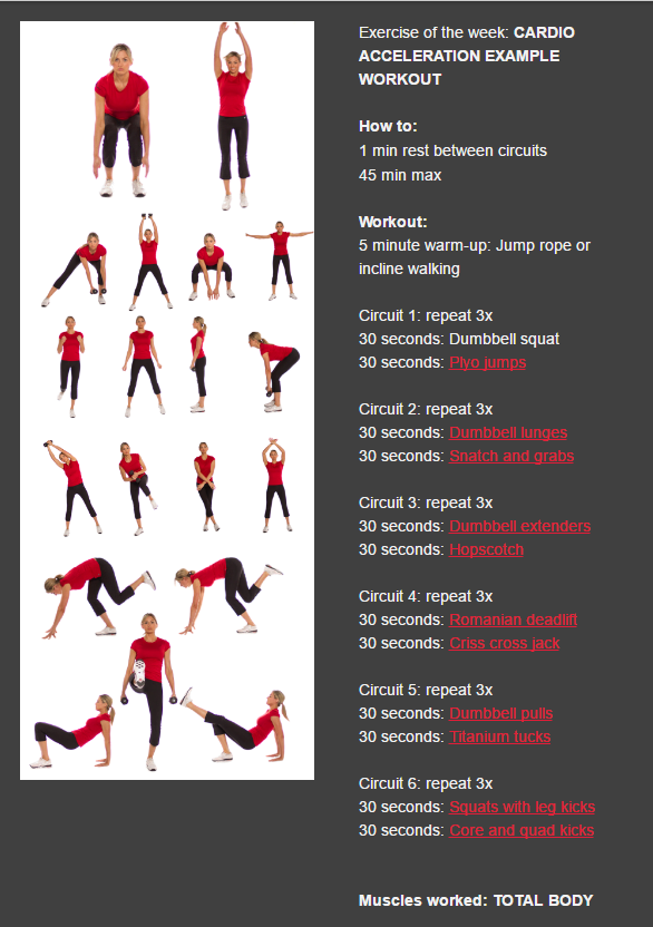 Cardio Vasa Fitness Dumbbell Squat Cardio Vasa