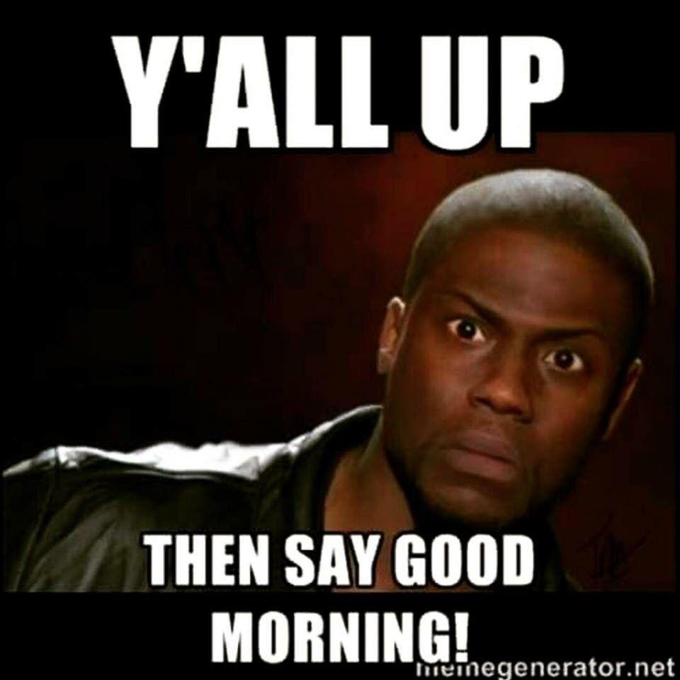 Pin By Dana On Gifs Memes Funny Good Morning Memes Morning Quotes Funny New Funny Memes