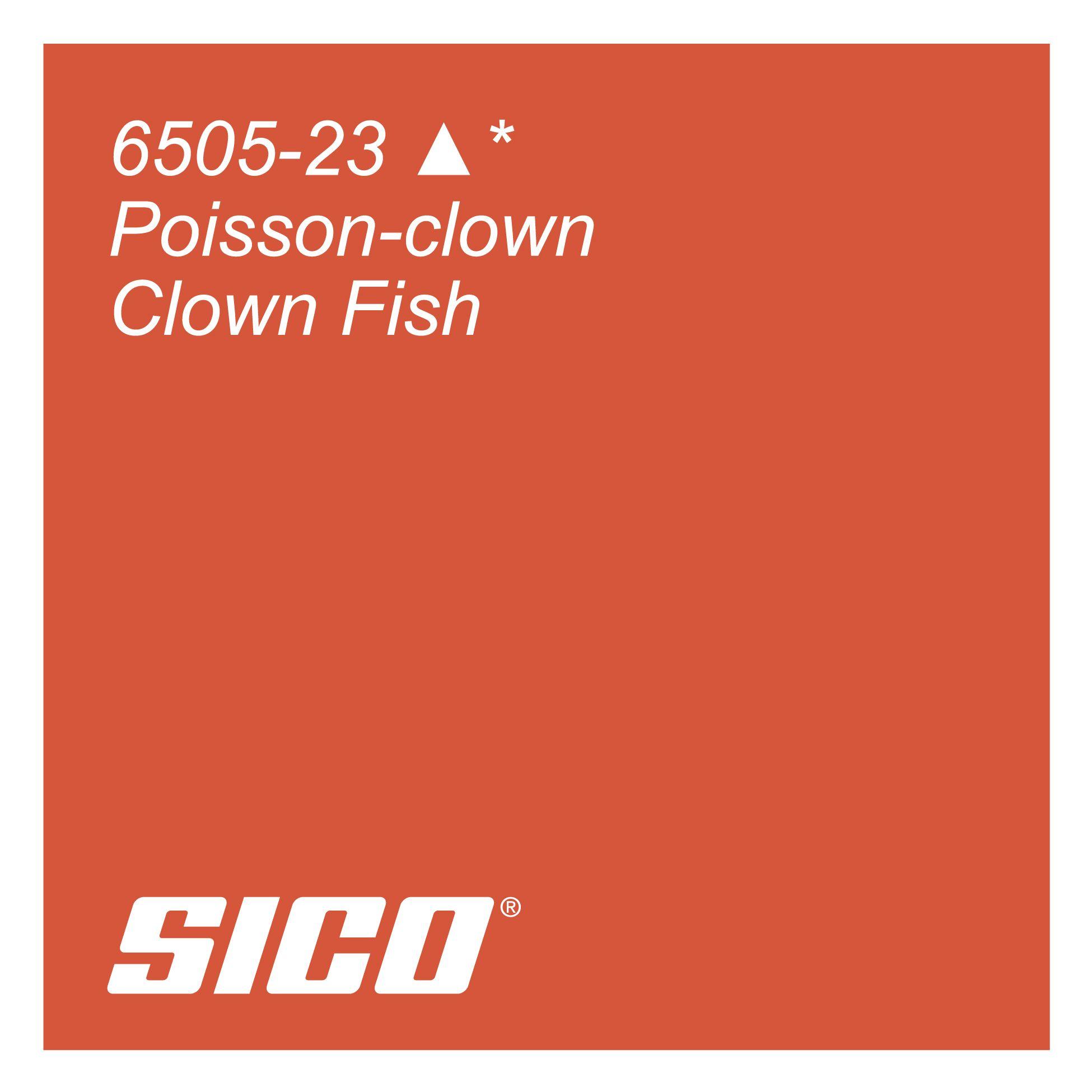 Clown Fish paint colour by Sico Paints | Poisson-clown, une couleur ...