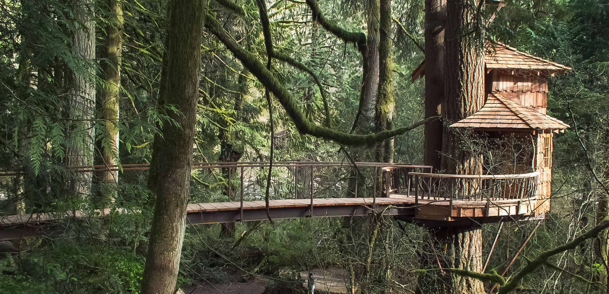 TreeHouse Point's lodging options offers an opportunity