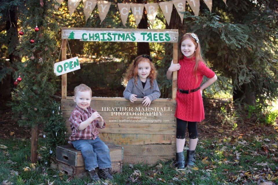 Christmas Photo Idea Christmas Tree Stand Photo Shoot Kids Christmas Heather Marshall Photographing Kids Christmas Tree Photography Christmas Photoshoot