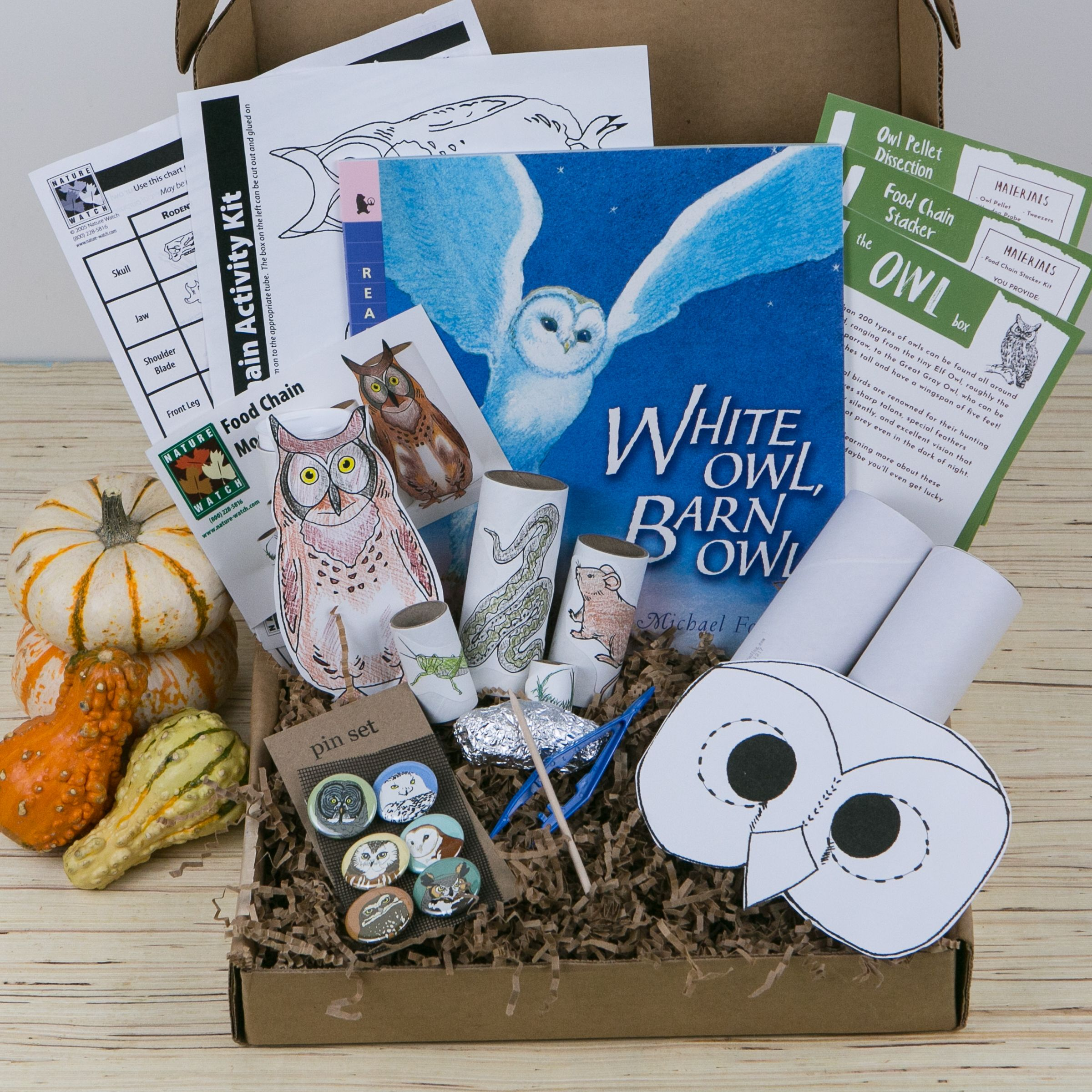 The Wonderkin Owl Box Comes Jam Packed With Everything You