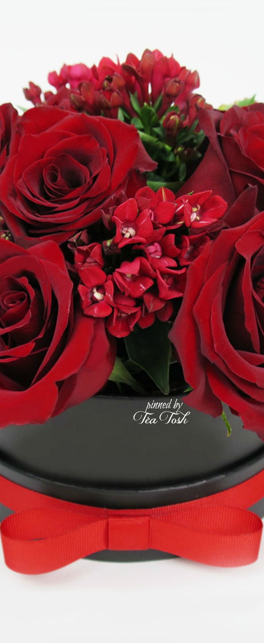 Téa Tosh Rose Gem Bouquet Beautiful red roses, Happy