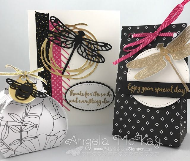 Dragonfly Dreams At Home Class