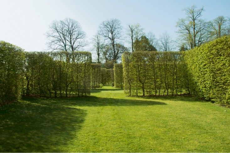 Hornbeam Shrubs Delineate A Lawn In This Minimal Landscape By Tom Stuart  Smith.