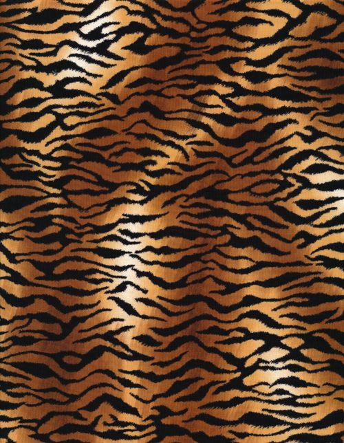 Tiger Skin Animal Print Wallpaper Tiger Skin Pattern Photography