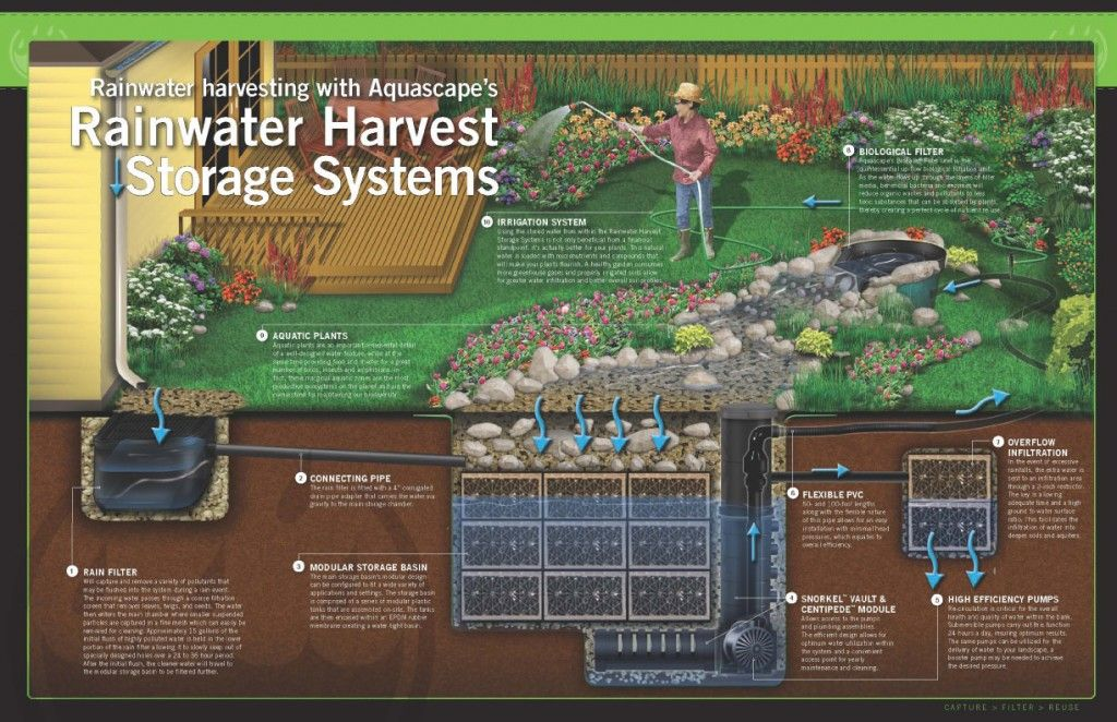 "Rainwater catchment — or ""harvesting"" — is an ancient practice involving collecting rainwater from a roof or other surface before it reaches the ground and storing it for future use. Not only do today's rainwater harvesting systems provide significant environmental, social and economic benefits, they can add beauty to your backyard too! 10 Components of... Read More"