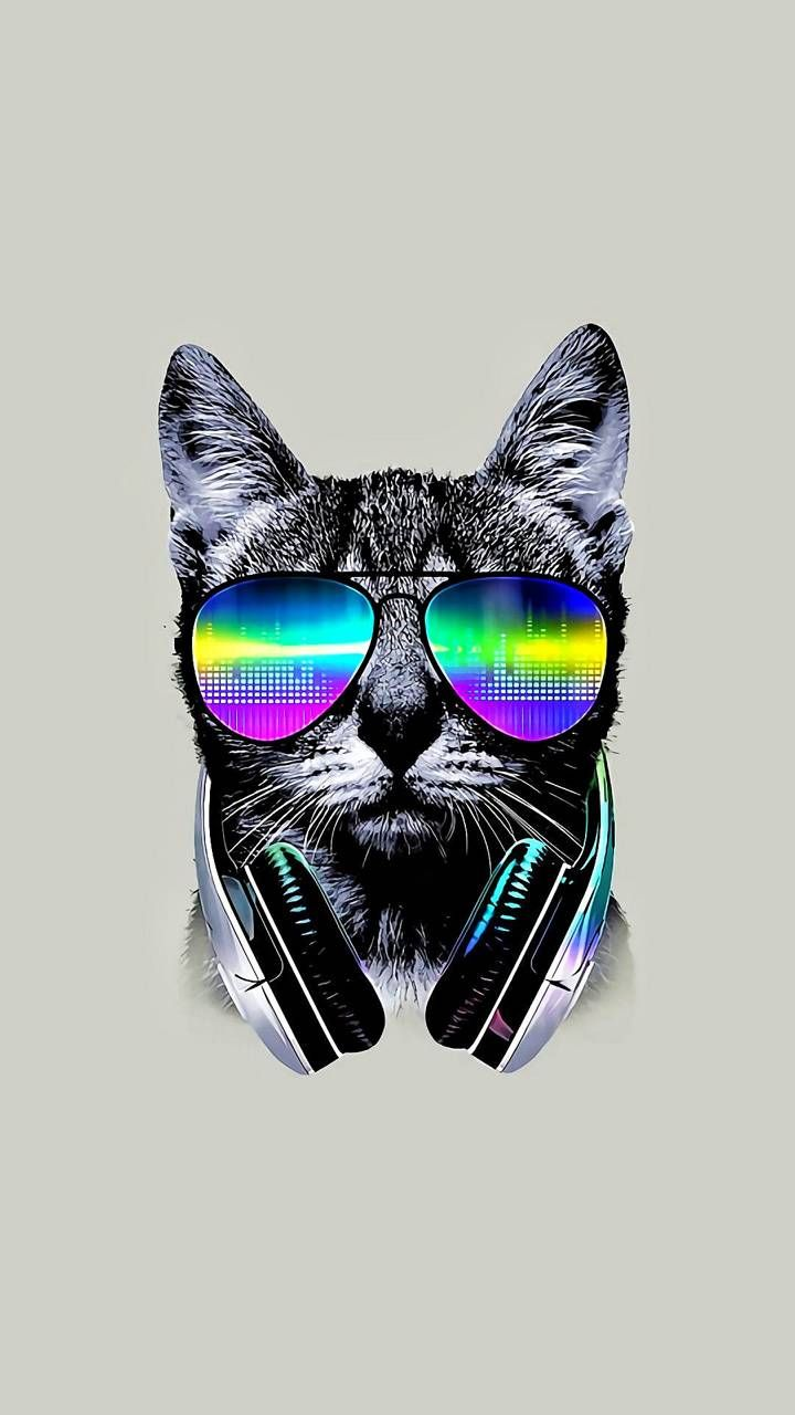Download Cool Cat Wallpaper By Macac12897 79 Free On Zedge Now Browse Millions Arte Com Caveira Papel De Parede Para Telefone Papeis De Parede Hd Celular