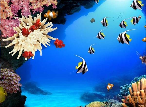 Imagens Fundo Do Mar - Pesquisa Google