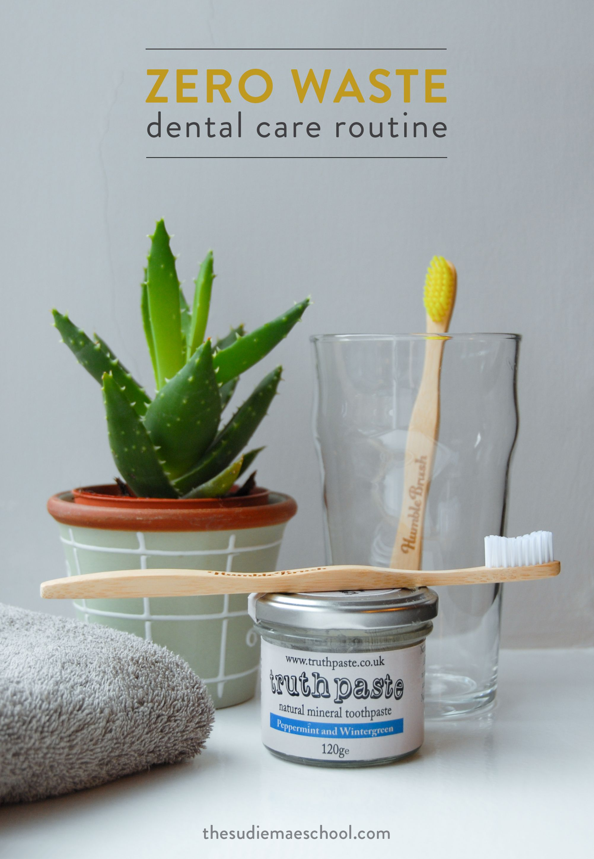 My Zero Waste Dental Care Routine Dental Care Zero Waste Dental