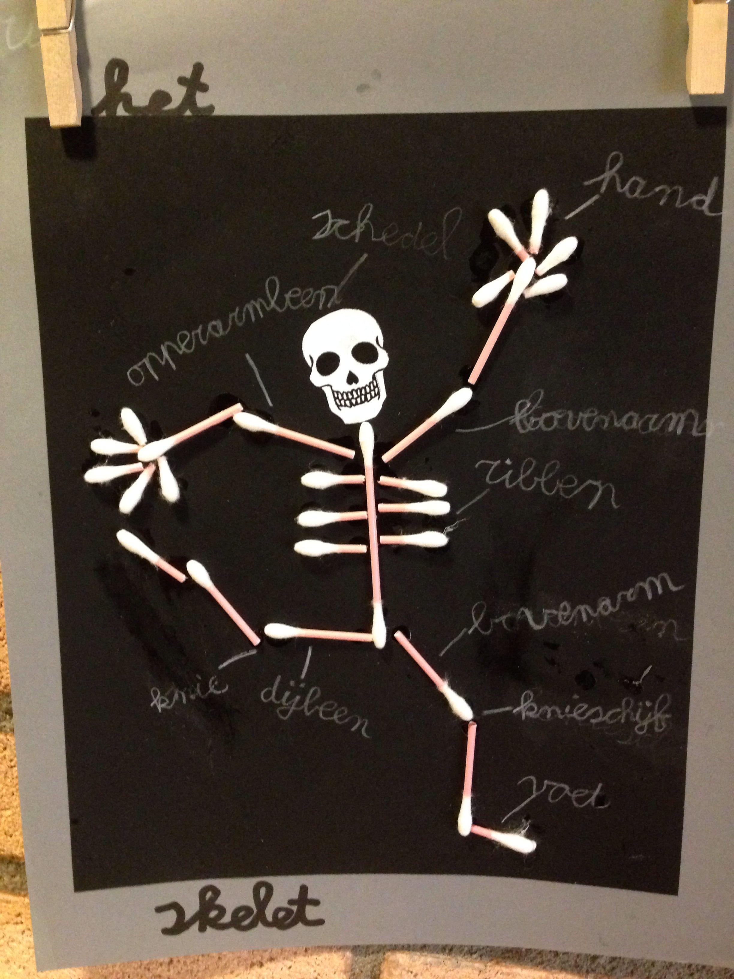 Menselijk Lichaam Skelet Knutselen Groep 4 5 Knutselideeen