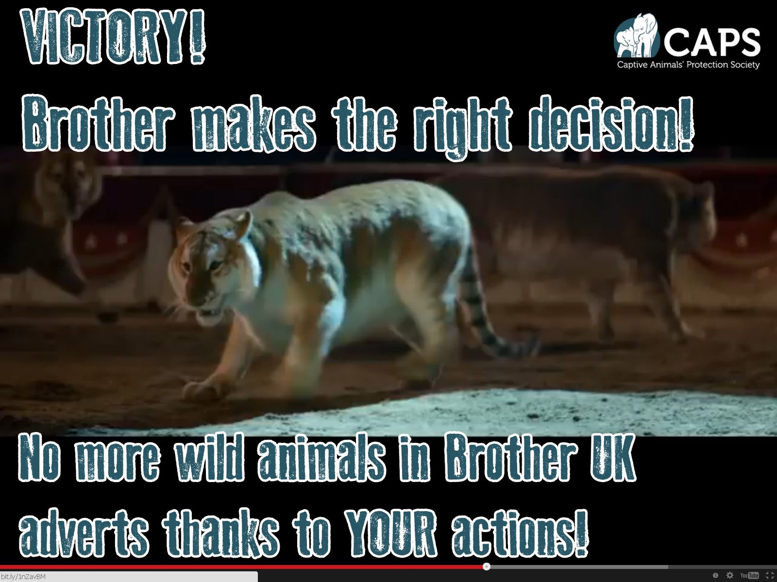 Victory Brother Uk Commits To End Performing Wild Animal Use Thanks To You Captive Animals Protection Society Animals Wild Animals Matter Animals