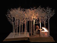 Portafolio Libro-Cut Escultura