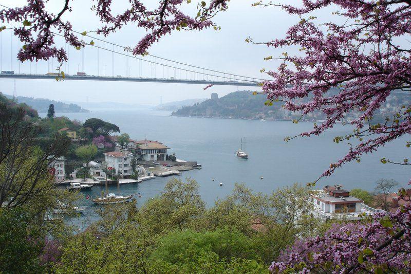 erguvan ve Boğaz    ISTANBUL