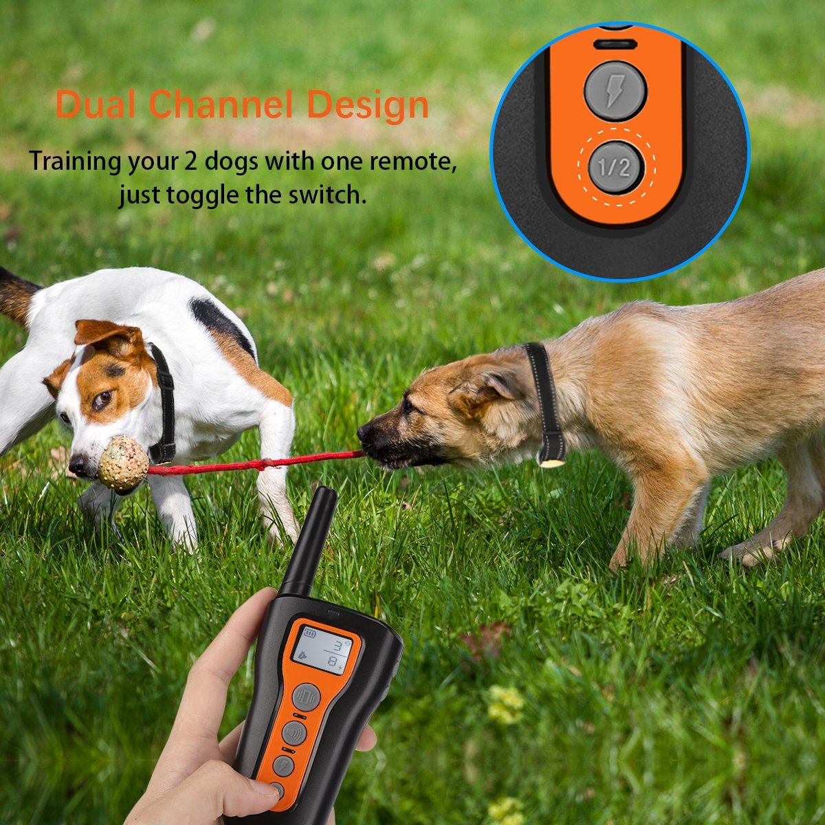 Iegeek Dog Training Collar 2 Dogs Shock Collars Remote Up To