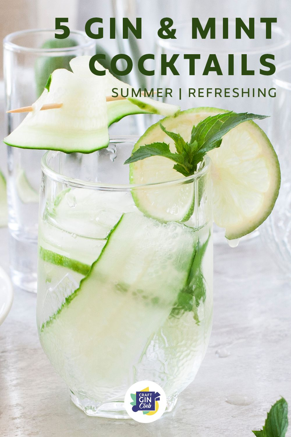 5 Of The Best Gin Cocktails With Mint Craft Gin Club The Uk S No 1 Gin Club Mint Cocktails Gin Cocktail Recipes Gin Cocktails