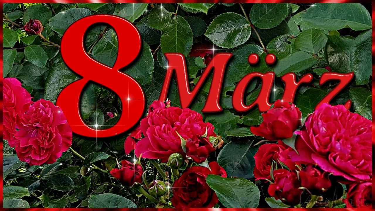 8.MärzAlles Gute zum Weltfrauentag! WhatsApp status