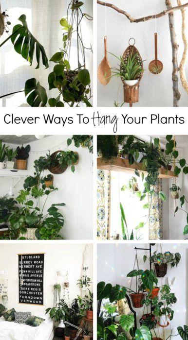 Clever Ways To Hang Your Plants #hangingplantsindoor