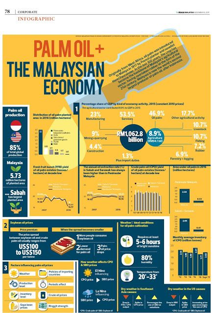 Palm Oil The Malaysian Economy Palm Oil Infographic Palm Oil