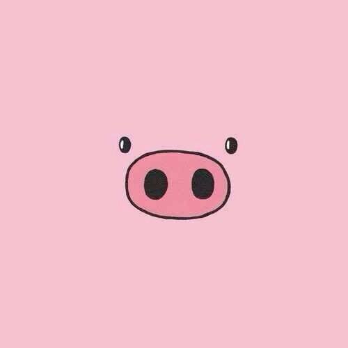 Pig Face Art Cute Wallpapers Cute Backgrounds Cute Wallpaper Backgrounds