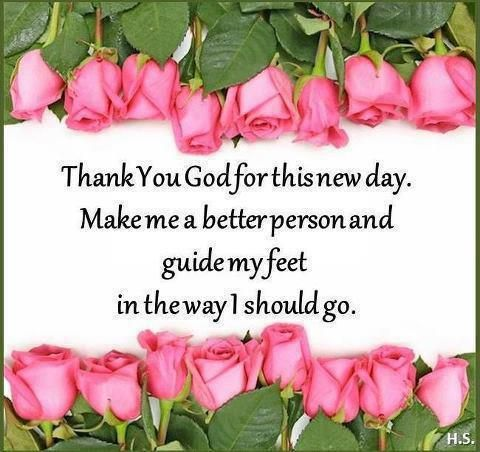 Jeremiah 6:16, Matthew 6:33 Good Morning Sisters in Christ - Have a blessed filled day in Jesus!!!