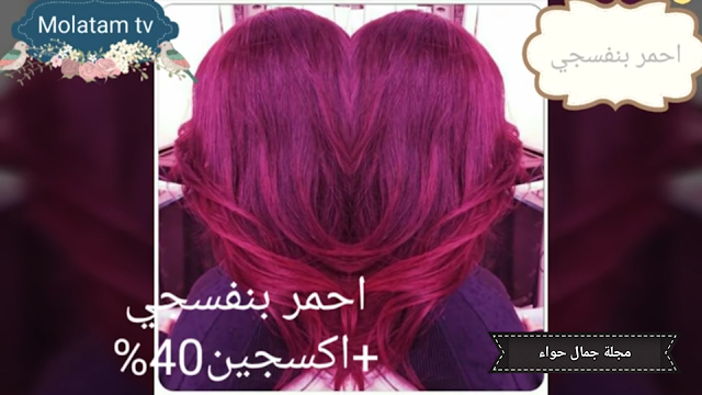 Pin By ام ساجد On صبغات Hair Color Flamboyage Hair Styles Hair Color