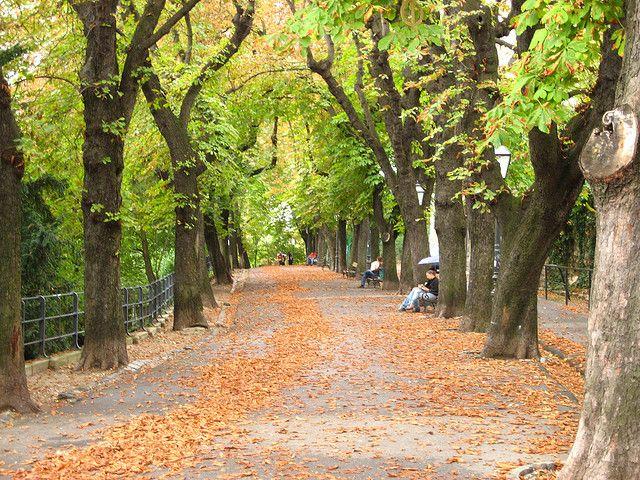 Zagreb 026 Zagreb Croatia Country Roads