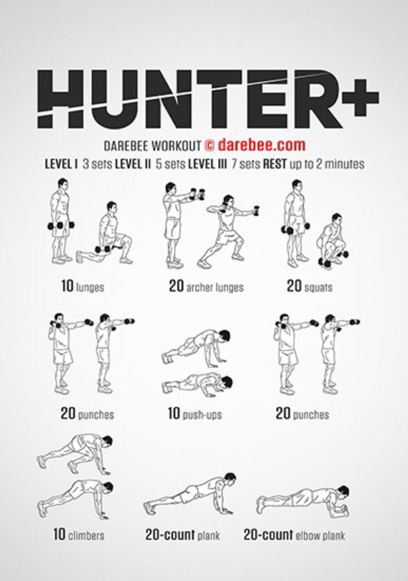 Hunter plus workout  strength with dumb bells designed to train the whole body also full dumbbell my visual created at workoutlabs rh pinterest