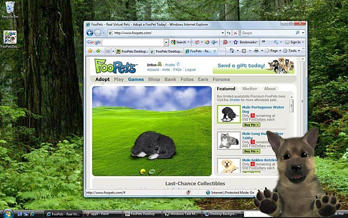 foopets desktop