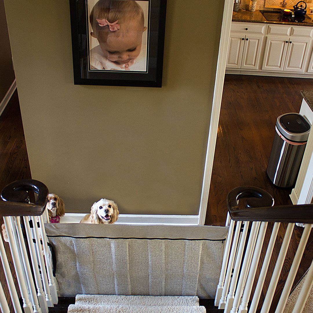 Keep Your Doggies Safe And Contained To One Level Stairs
