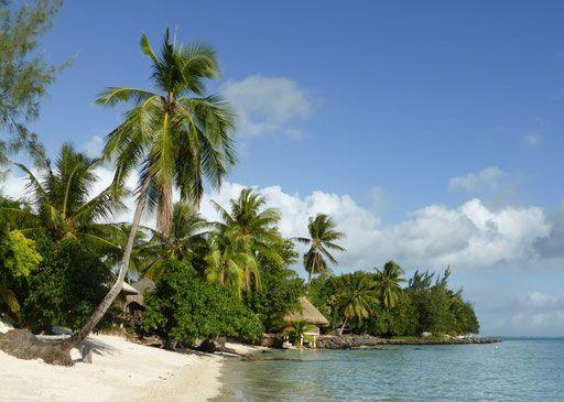 Olaf Broder & Geli Kruse   Europa kann warten   Reisebericht und Bildband einer Weltreise   GO Books   Matira Beach auf Bora Bora