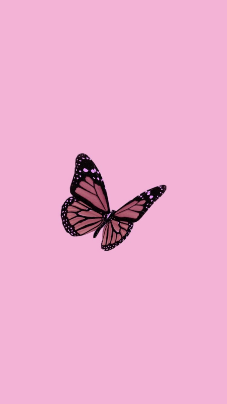 Pin By On Iphone Wallpaper Iphone Wallpaper Tumblr Aesthetic Butterfly Wallpaper Iphone Pink Wallpaper Iphone