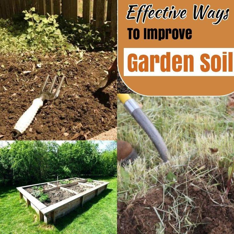 Top Tricks for A Thriving Preparing Garden Soil * Click