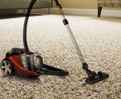 DOES VACUUM WORKS WELL TO KILL FLEAS ON CARPET, My Exp
