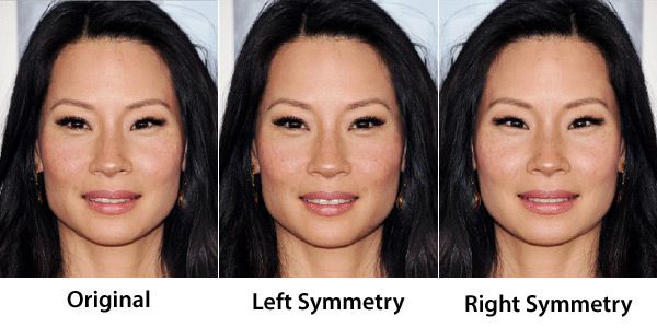 21 Best Symmetry Always More Attractive? images | Face ...