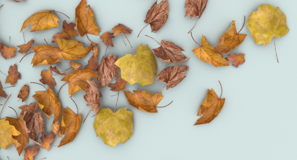 3d Model Dried Scattered Leaves Pile 02 Turbosquid 1341481 In 2021 Dried 3d Model Leaves
