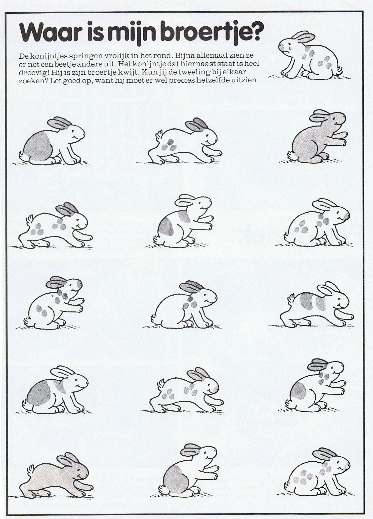 Pin Van Tamara M Op Thema Huisdieren Huisdieren Thema Konijn