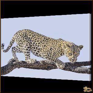 Ягуар на ветке, картина, Модерн животный мир №75 - Модерн Животный мир <…