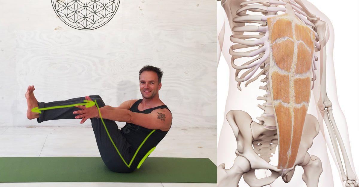 Yoga-Übungen für offene Hüften: Eka Pada Rajakapotasana – die Taube ...